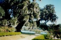 Middleton Place, Charleston, SC